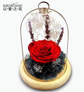 许愿樽 进口永生花波尔多玫瑰花 玻璃樽礼物 送女友生日礼物爱人纪念日创意礼品